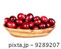 Fresh  cranberries 9289207