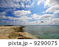 沖縄ナガンヌ島 9290075