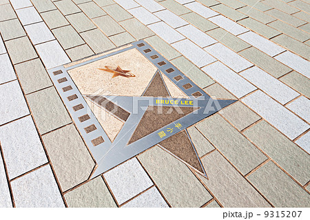 Bruce Lee star 9315207
