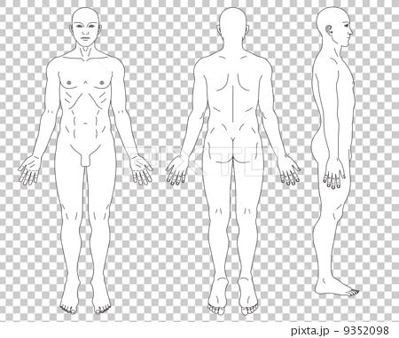 男性人體示意圖 9352098