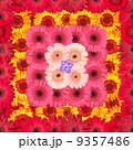 Seamless Pattern from Vibrant Gerbera Flowers 9357486