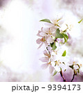 Spring border background with pink blossom 9394173