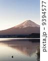 東雲染富士 9394577