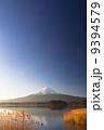 黄金薄と霊峰富士 9394579