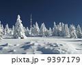 Snowy Plain 9397179