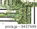 セメント 表面 石工の写真 9437499