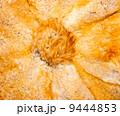 ビーバー 美しい 褐色の写真 9444853