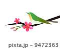 花と鳥 9472363