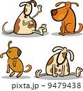 イヌ科 ワンちゃん 動物のイラスト 9479438