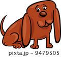 ワンちゃん イヌ科 動物のイラスト 9479505