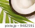 coco bath 9482591
