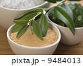 塩 食塩 グリーンの写真 9484013