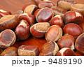 秋 あき 栗の写真 9489190