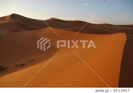 夕暮れのサハラ砂漠 9517657