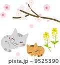 ベクター 猫 春のイラスト 9525390