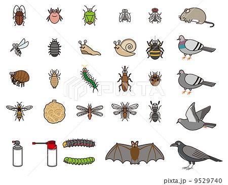 害虫のセット 9529740