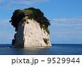 軍艦島 見附島 海岸の写真 9529944
