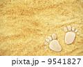 あしあと 足跡 足指の写真 9541827