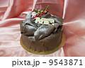 チョコレートのクリスマスケーキ 9543871