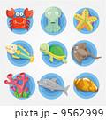 かに カニ 蟹のイラスト 9562999
