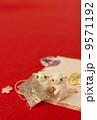 年賀状素材 年賀素材 羊の写真 9571192