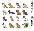 イヌのセット 9614686