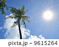 ヤシの木 青空 9615264