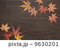 背景 紅葉 落ち葉の写真 9630201