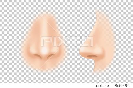 鼻のイラスト 9630496