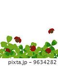 てんとう虫とクローバー(白・透明バック) 9634282