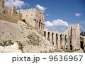 シリアのアレッポ城 9636967