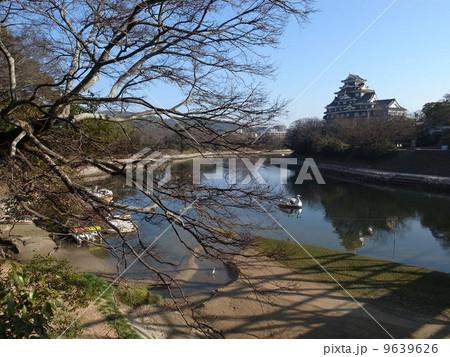 岡山城とスワンボート 9639626