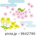 ウグイス 菜の花 花のイラスト 9642790