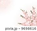 桃の花_背景 01_横 キラキラ 9698616
