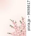 桃の花_背景 01_縦 9698617