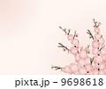 桃の花_背景 01_横 9698618