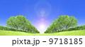 ケヤキ並木 草原 青空 逆光 切り抜き合成 9718185