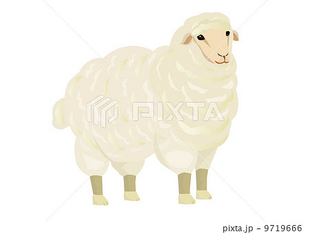 羊のイラスト 9719666