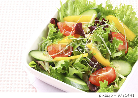 野菜サラダ 9721441