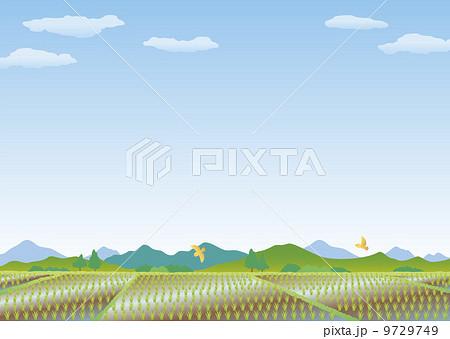 風景4田んぼ Aのイラスト素材 9729749 Pixta