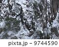 雪の山 雪山 ゆきやま 9744590