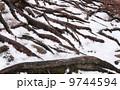 黄山 安徽省 修験 9744594