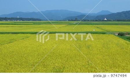 穀倉地帯 9747494