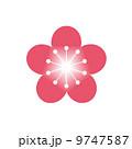 紅梅 梅花 梅の花のイラスト 9747587