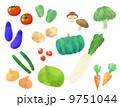 野菜いろいろ バラ 9751044