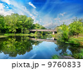 森林 道 緑の写真 9760833