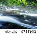 菊池渓谷 9766902