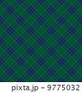 チェック柄 タータンチェック ベクターのイラスト 9775032