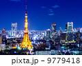 東京都 東京タワー 東京タワーの写真 9779418