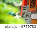 ドラゴン 竜 龍の写真 9779732